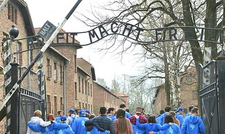 Can Holocaust education combat antisemitism?