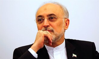 Iran nuclear chief: Construction of nuclear plants going well