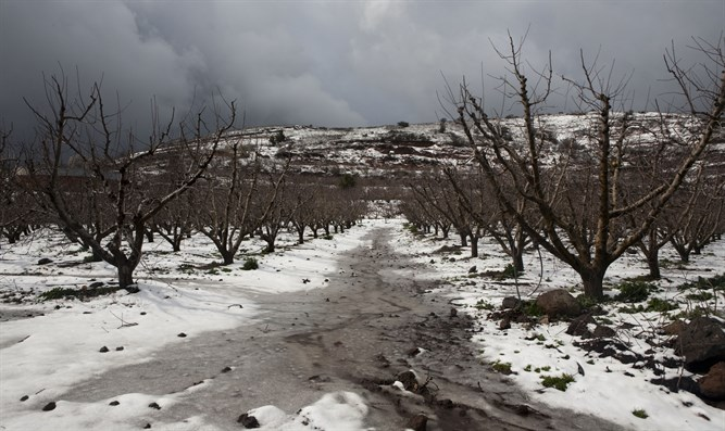 Snow in the northern Golan